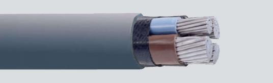 САВТ Uo/U-0.6/1 kV  БДС 16291-85